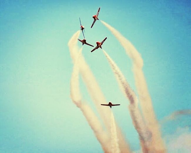 Snowbirds in comox valley in the summer time. I call this the claw! Vacation Time Family Time ♥ Happy :)