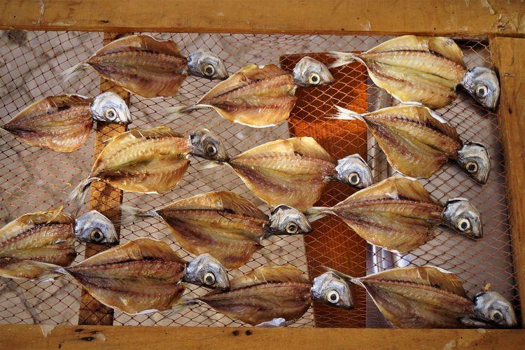 Full Frame Shot Of Fish