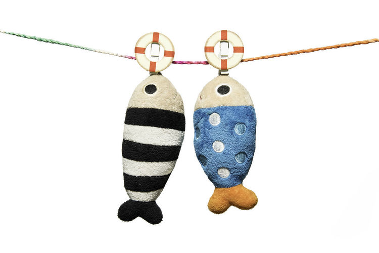 two pillows fish shape hanging on the rope isolated on white backgorund Close-up Day Fish Hanging Multi Colored No People Ropes Studio Shot White Background White Background Indoors