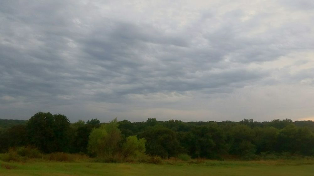 ☁⏳☁⌛☁ suns going down, get the wood! Happy Halloween Pond Life Naturephotography Bonfire Night VSCO Oklahoma Blueskies Blurred Lines Androidography Treetops Canopy Life Treescape Trees And Sky Treescollection