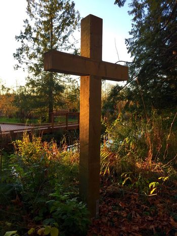 Religion Cross Spirituality Nature Beauty In Nature SPIRITUAL HEALING Spirit Photography Spiritual Reflections Spiritualjourney Spiritualguidence Spiritual Place Spiritualité Spirit-peace Women Love Photography Click Click 📷📷📷 No Filter No Edit Just Reality EyeEm Eyeem Market EyeEm Gallery ✨✨🌟🌟Walking in a garden of plants , flowers, peace, quiet reflections, ponds, bridges to nowhere. Fall light reflects upon a symbol of pure love. It can mean different things to different people. That's ok. Mostly it's all about love❤️for all in the world. We are all united in some shape or form. Respect each other✨and in doing so so. Not much difference. I'm so proud of my fellow EyeEm friends😍 each of your photos represent beauty and thoughtful statements you're able to capture with a single click🌏around the globe we come together 🙋. Thank you✨✨🌟🌟