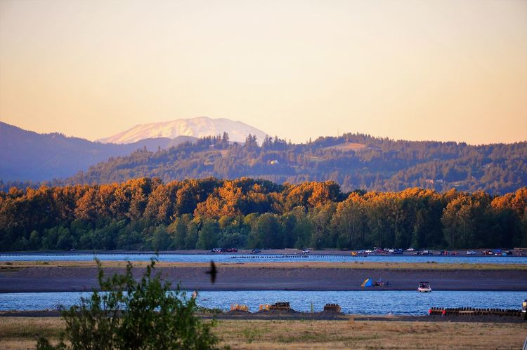 Autumn Beauty In Nature Day Lake Landscape Mountain Mountain Range Nature Outdoors Real People Scenics Sky Sunset Tranquil Scene Tranquility Tree Water Sommergefühle Mt. St. Helens  Paint The Town Yellow