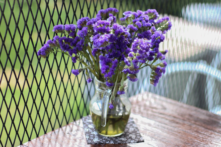 Beauty In Nature Close-up Day Flower Flower Head Fragility Freshness Growth Nature No People Outdoors Purple Table