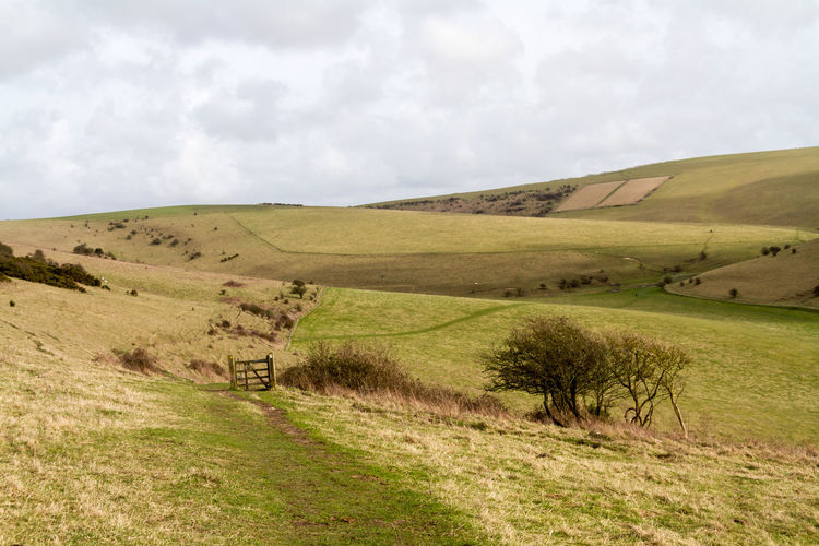 South Downs Landscape Beauty In Nature Cloud - Sky Countryside Day Gate Grass Green Landscape Lewes Mount Caburn National Park Nature No People Outdoors Pathway Rolling Hills Rural Scene Scenics Sky South Downs Sussex Tranquil Scene