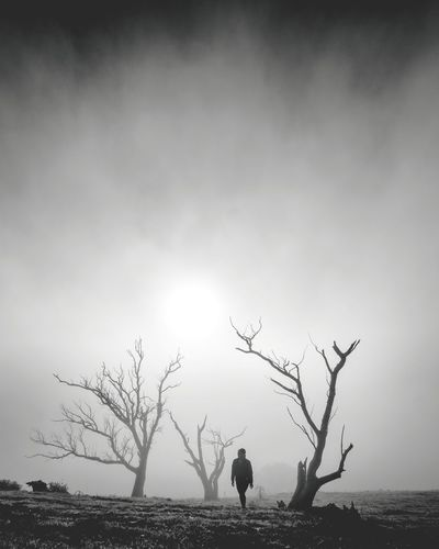 emerging from the fog Despression Anxiety  Moody Foggy Mood Dead Trees Nature Girl In Fog Black And White Photography
