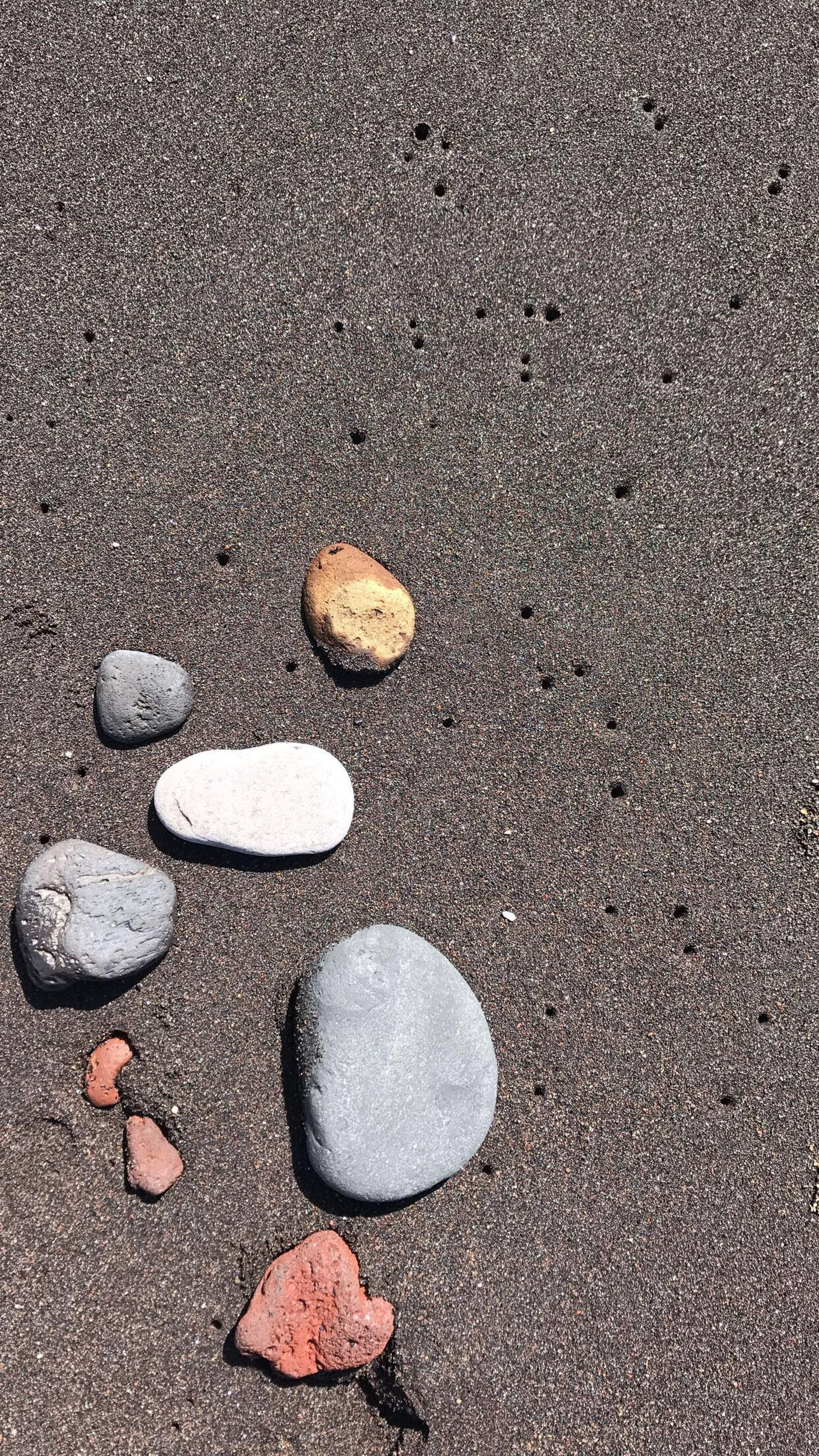 sand, no people, high angle view, beach, land, stone - object, rock, nature, day, stone, pebble, solid, beauty in nature, outdoors, still life, shell, tranquility, close-up, full frame, gray