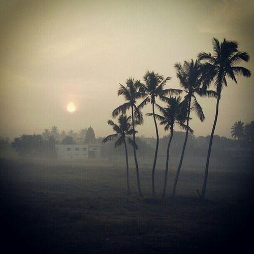 Last morning of 2012..;)