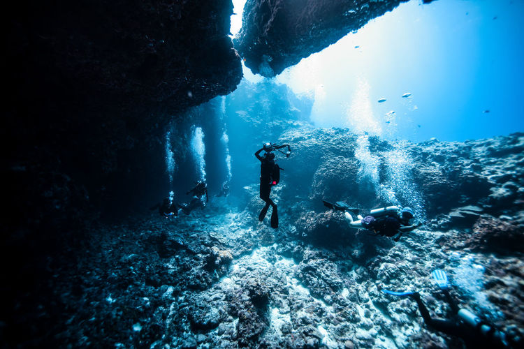 Saipan underwater life Adult Adults Only Adventure Day Exploration Men Nature One Man Only One Person Only Men Outdoors People Scuba Diving UnderSea Underwater Water