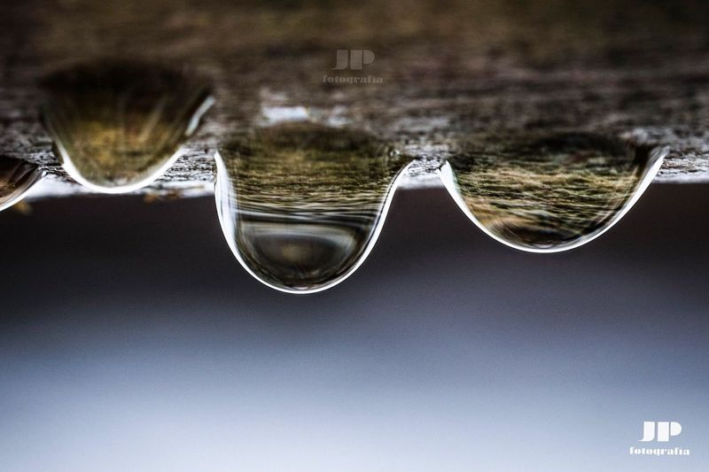 Drops Naturelovers Nature Photography Nature Drops Water Bubble No People Day Outdoors Nature Eyesight Beauty In Nature Close-up