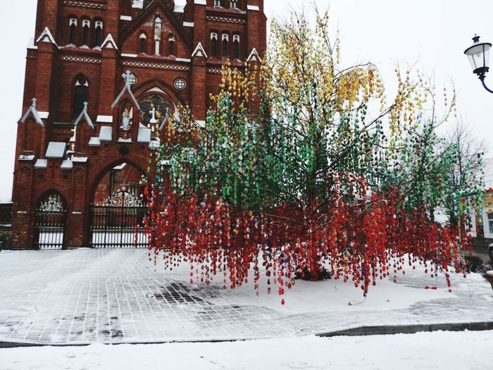 Church Eggs... Eggtree Tree Snow Cold Temperature Winter Sky Architecture