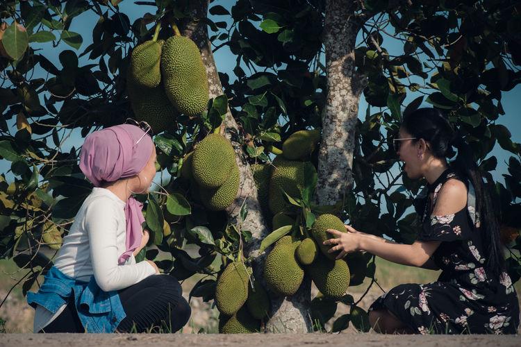 Rear view of women sitting on tree