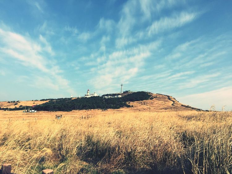 Travel Udo Jeju Landscape Sky Nature Field No People Outdoors Beauty In Nature