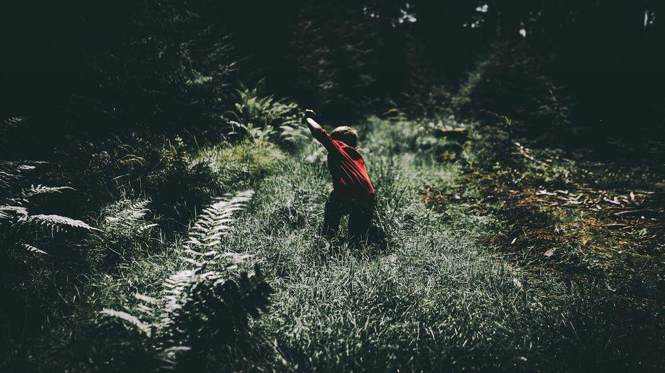 Forest Boy Childhood Exploring