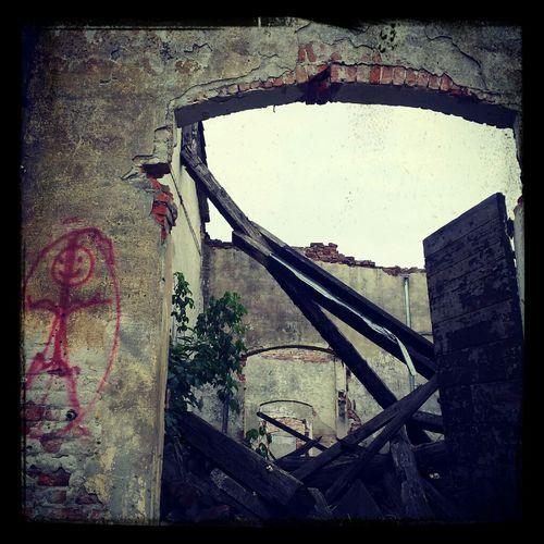 Demolizione Via Tunisi  Padova