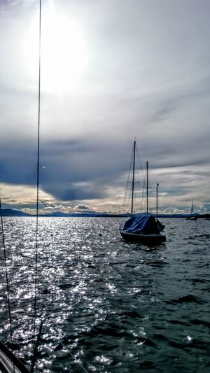 Sailing Boat Dusk On The Water Bodensee Allensbach Untersee Reflections On The Water Bodensee Lake Sailing Sail Away Grey Skies Blue Waters Feel The Journey Original Experiences Calmness Within Die Ruhe Vor Dem Sturm On The Way