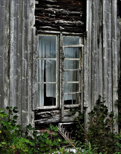 Abandoned & Derelict Abandoned Places Decay Abandon_seekers Abandoned Buildings Abandoned_junkies Architecture Bad Condition Built Structure Damaged Day Decayed Beauty Decaying Decaying Building Obsolete Old Old Buildings Old House Outdoors Run-down Treehouse Weathered Window Window View Windows
