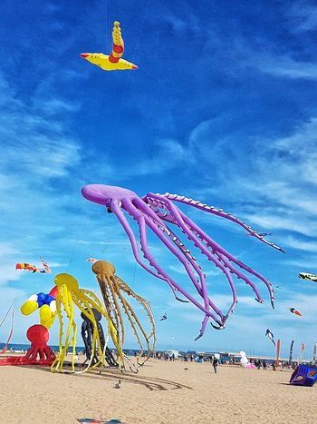 Up in the air Blue Sky Outdoors Animal Themes Kites Kite Festival Flying Kites Animal Shapes Colourful Beach Sunshine