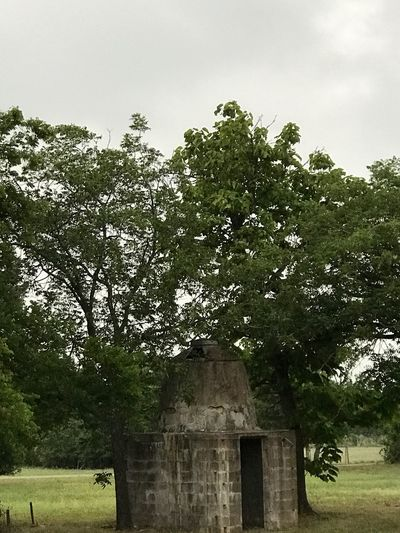 Tree No People Built Structure Day Outdoors Grass Sky Old Brickwork Is Amazing... 💥old water cistern .. standing still, remembering another time , much simpler than now