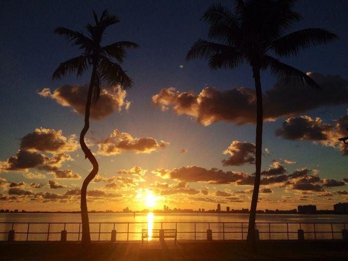 Sunrise Miami Travel Sun