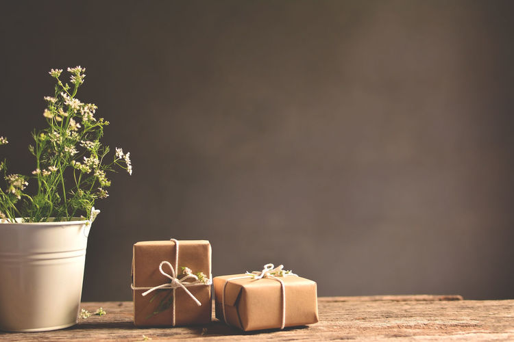Potted plant and two gift boxes