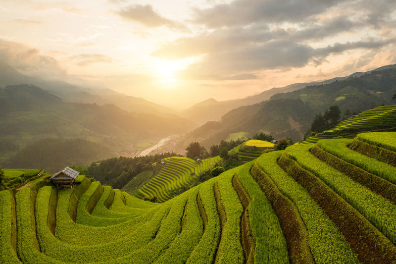 Scenic view of terraced field against sky at sunset