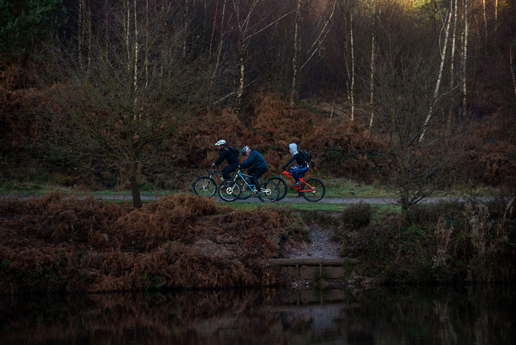 People riding bicycle in forest