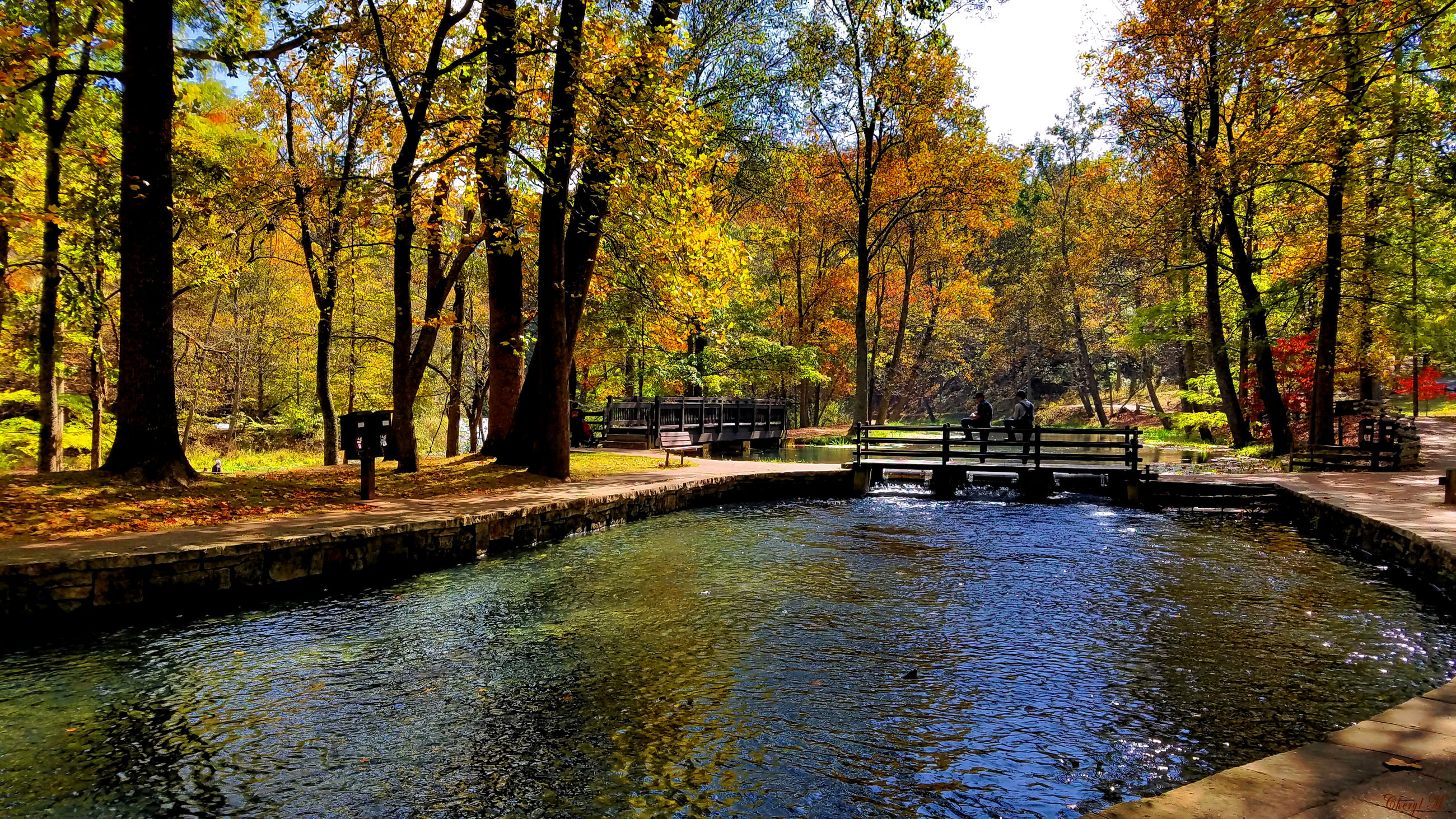 tree, water, autumn, season, change, tranquil scene, tranquility, tree trunk, scenics, growth, beauty in nature, nature, branch, park, day, waterfront, canal, tourism, vacations, non-urban scene, outdoors, park bench, woodland, natural condition
