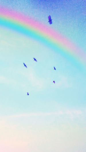 Flying Multi