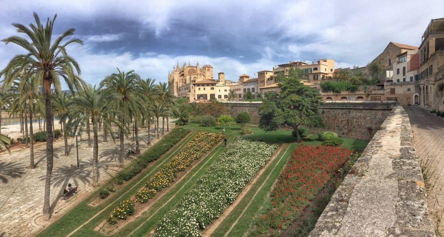 Casco Antiguo Palma De Mallorca Mallorca Relaxing Hi! Foto Enjoying Life Parc De La Mar Photo