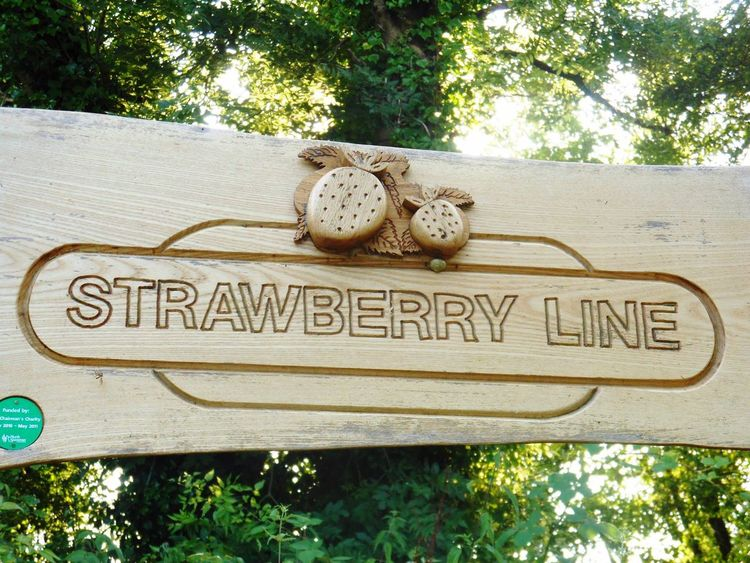 Old Railway Line Strawberry Line Countryside Walking Somerset