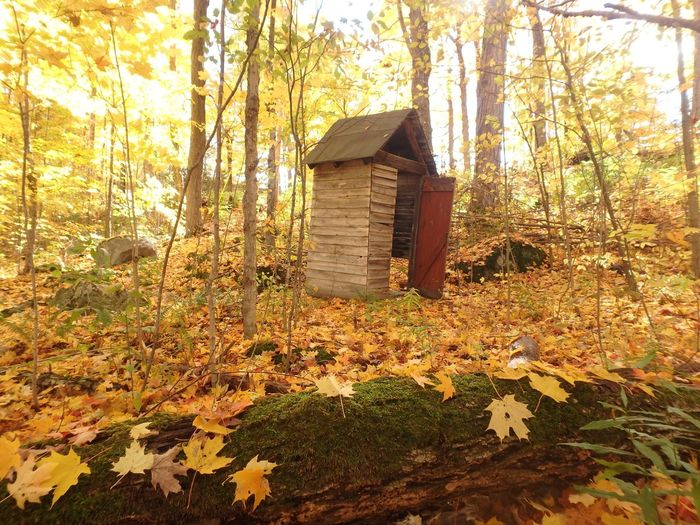 Outhouse Explore Fall Colors The Purist (no Edit, No Filter)