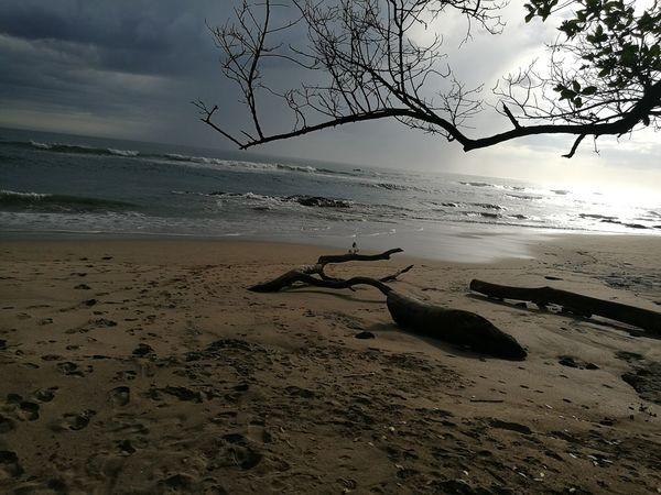 De lo bonito de viajar, contemplar cosas únicas en el mundo!!! CostaRica🇨🇷 PlayaNegra, Guanacaste Graciasgraciasgracias