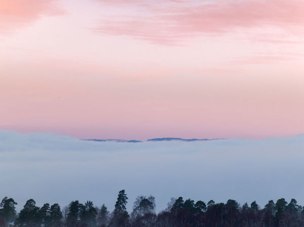 Dawn. Redmorning sky behind the morning fog. Beauty In Nature Sky Tranquility Tranquil Scene Scenics - Nature Cloud - Sky Idyllic Nature Orange Color Outdoors Non-urban Scene Fog Pink Color Environment Dawn Sunrise Morning Mist Morning Sky Morning Fog Mountain Range Horizon