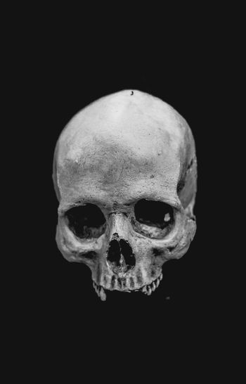 Human skull Buenos Aires EyeEm Best Shots Anatomy Black And White Black Background Blackandwhite Body Part Bone  Buenosaires Close-up Copy Space Cut Out Fear Horror Human Body Part Human Bone Human Face Human Skeleton Human Skull Indoors  Skeleton Skull Spooky Still Life Studio Shot