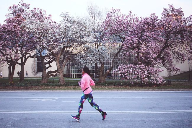 Urban Spring Fever Urban Geometry Shootermag Running Jogging Sports In The City Central Park Exercising Flowers Springtime Getting Inspired Spring Into Spring Spring Flowers Spring EyeEm Best Shots EyeEm Nature Lover Eye4photography  EyeEm Gallery Pink Pink Flower Blooming New York City Canon New York Girl Power