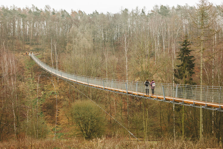 People on bridge in forest