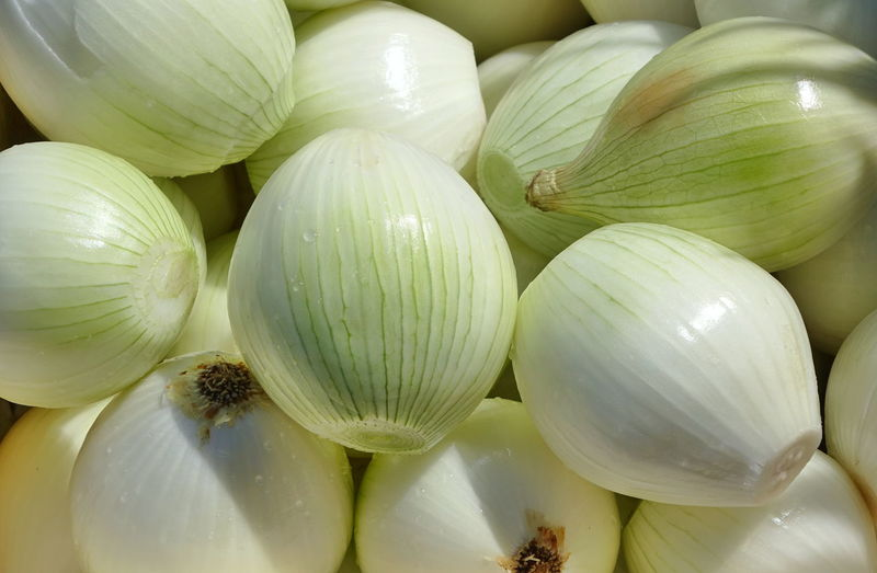 Peeled onions are ready for cutting and cooking Cooking Sunlight Close-up Food Freshness Green Color Healthy Eating Leeks Onions Peeled Peeled Onion Vegetable