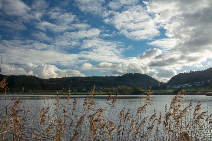 Autumn Beauty In Nature Cloud - Sky Day Eifel Germany Lake Landscape Meerfeld Meerfelder Maar Mountain Nature No People Outdoors Scenics Sky Water