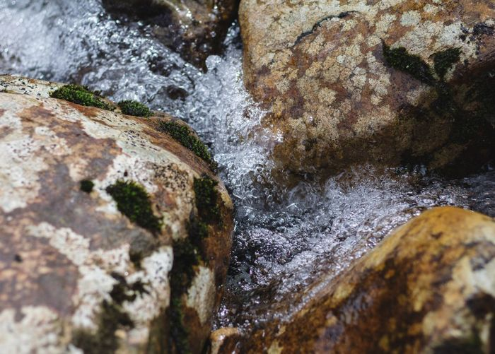 Close-up of water flowing through rocks