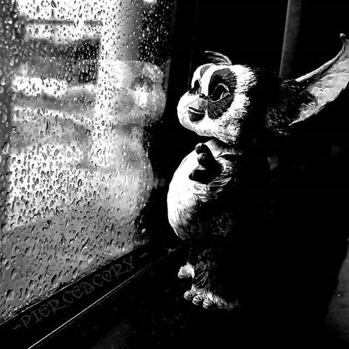 When you want to go out. but, pregnancy is in the air. Toyplanet_challenge_bw0815 Mogwai Grimlin Grimlins Neca Necatoys FunWithMogwaiPatches Tcb_spetembrrr