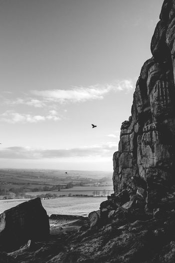 Yorkshire Landscape Blac&white  Birds