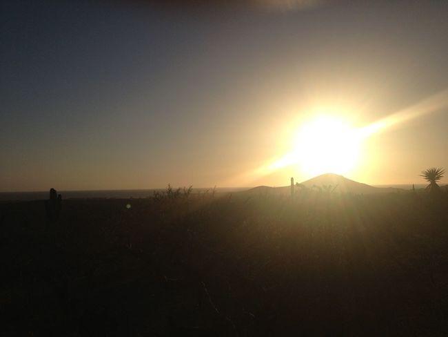 Sunset Beach Desert Landscape