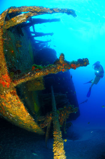 Blue Close-up Diving Divingphotography SCUBA Underwater Underwater Love Underwater Photography Underwater World Water Wide Angle Wreck