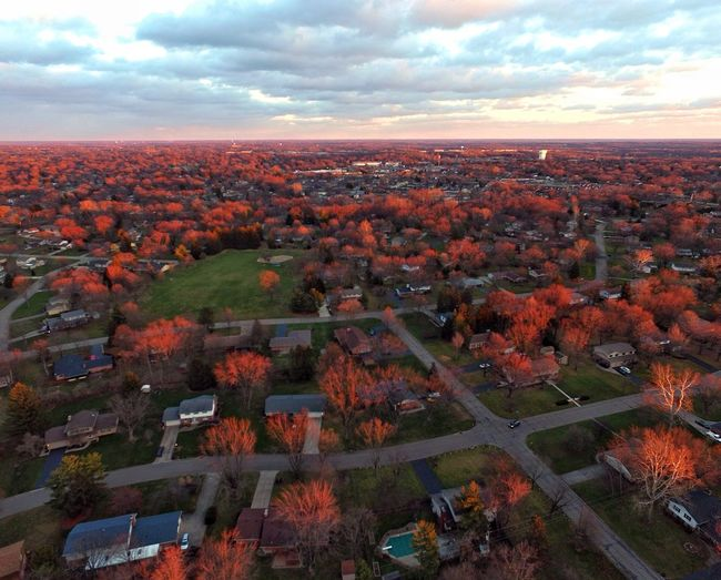 The setting sun reflects off the tree limbs, set them on fire 🔥 Drone  Dronephotography Drones Sunset_collection Sunset Sun_collection Clouds And Sky Check This Out Godsbeauty My Best Photo 2015 Light And Shadow Showcase: December Skyporn Trees My Neighborhood Beauty In Nature Drone is 400ft. Up in our front yard.....very windy... Nature On Your Doorstep Drone Moments Beautiful Nature Clouds & Sky From My Point Of View Houses Hello World Nature_collection Neighborhood 🔥