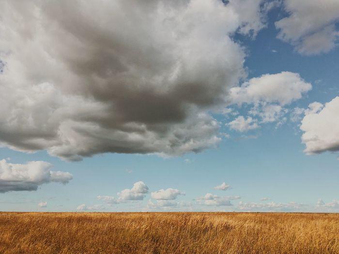 Рязанское море