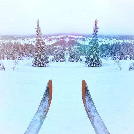 ❄⛄🏂 Winter Ski Skiing Mirror Beautiful Beautiful Nature Nature EyeEm Nature Lover Adventure Beautiful View Forrest Forrest Photography SKII Skiing ❄ Skiing 🎿 Love The Nature