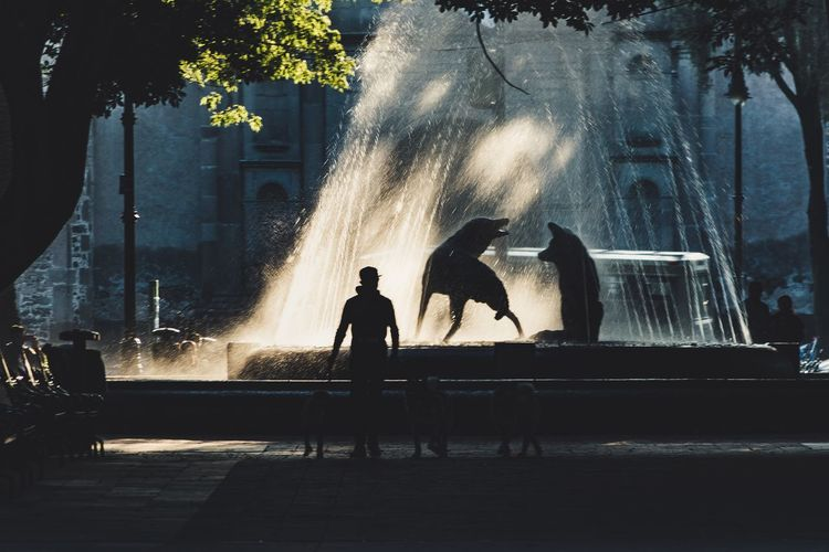 People on fountain against trees