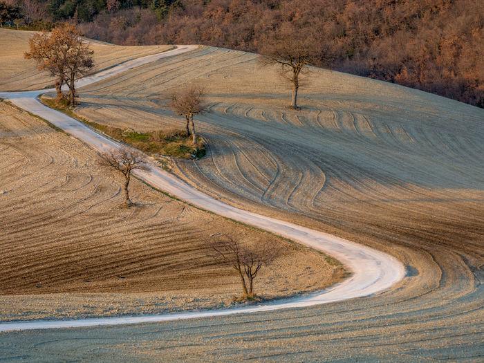 Road passing through land