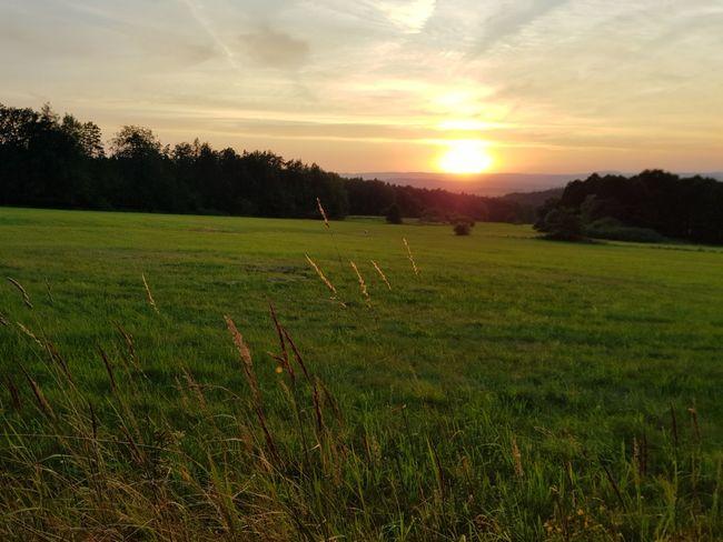 Sunset Field Sky Grass Landscape Shining Sunbeam