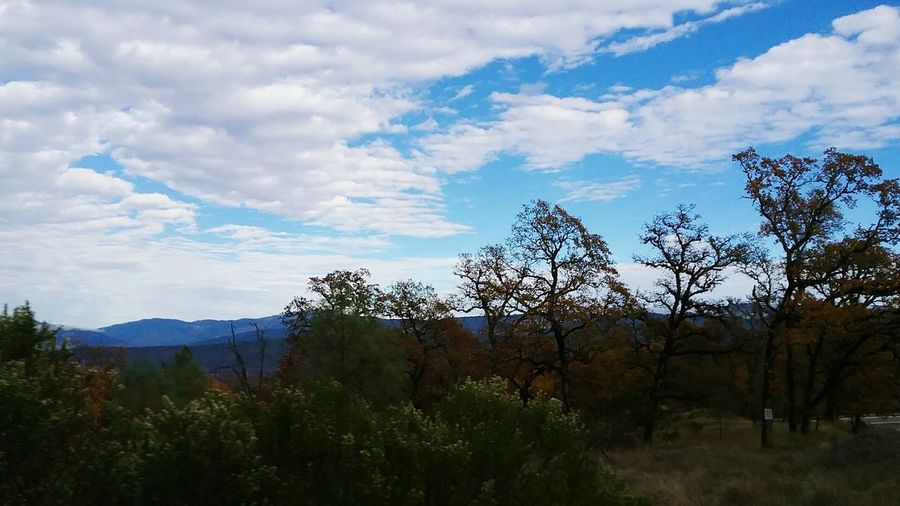 Hwy 162 Covelo,Ca Seasonal Changes Tranquility Photography Themes Mendocino County